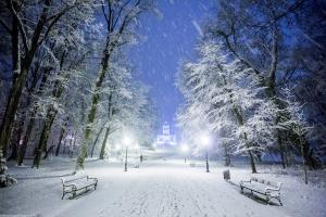Snow in the Park Maksimir